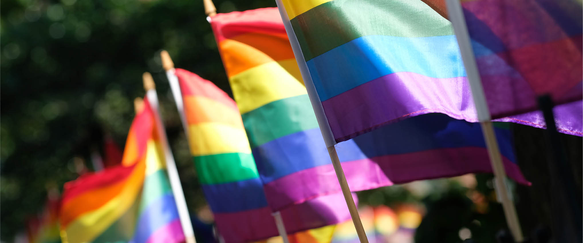 HKS Honors Pride Month: Uplifting our LGBTQ+ Community and Working Toward More Inclusive Design